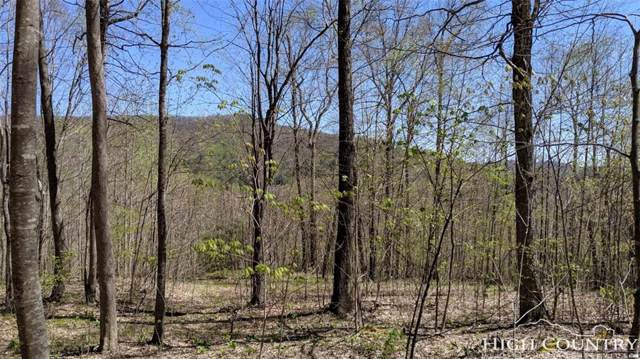 Lot 14 Timberlane Drive, Boone, NC 28607 (MLS #214158) :: RE/MAX Impact Realty