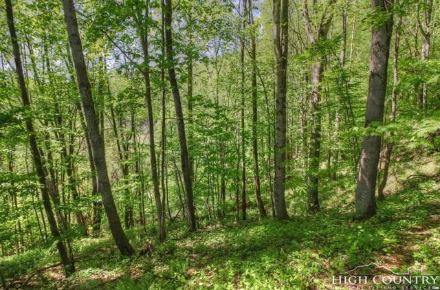 Lot 7 Yasmine Lane, Vilas, NC 28692 (#214250) :: Mossy Oak Properties Land and Luxury