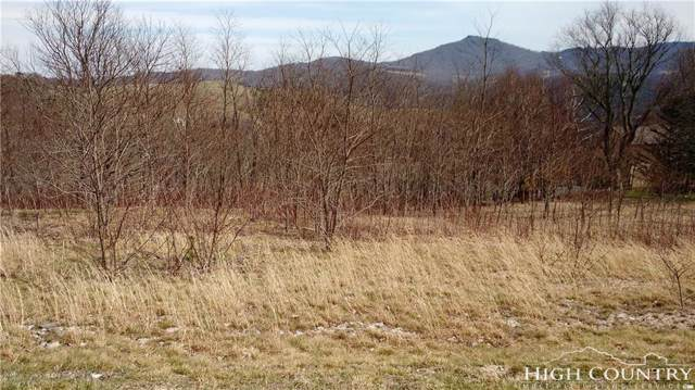 Lot 7 Banner Grande Lane, Banner Elk, NC 28604 (MLS #214258) :: RE/MAX Impact Realty