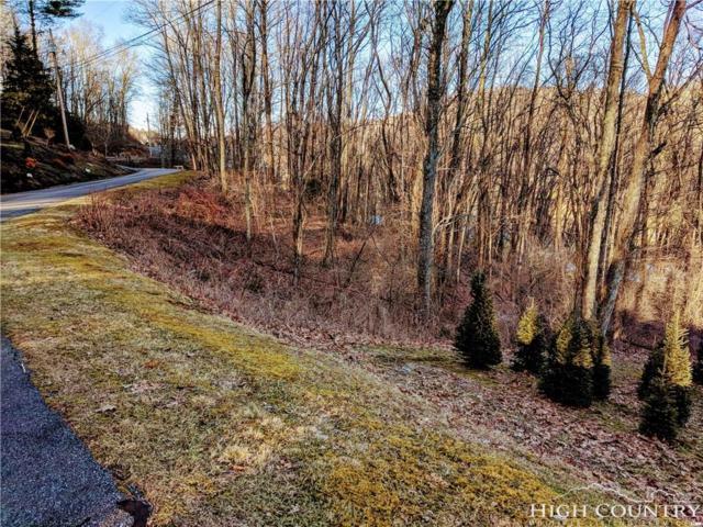 810 Hemlock Drive, Newland, NC 28657 (MLS #214278) :: RE/MAX Impact Realty