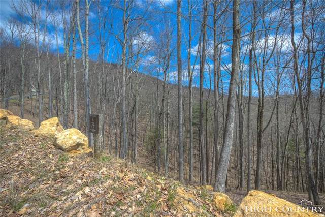 Lot C74 Osprey Drive, Banner Elk, NC 28604 (MLS #214288) :: RE/MAX Impact Realty
