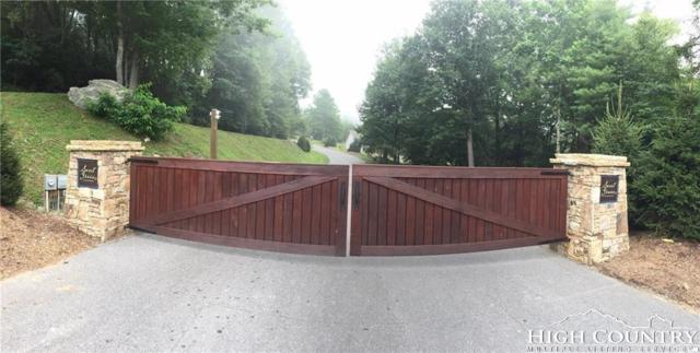 Lot 27 Twin Branches Road, Blowing Rock, NC 28605 (MLS #214351) :: RE/MAX Impact Realty