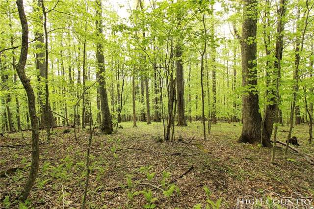 Lot 343 Twin Rivers Drive, Boone, NC 28607 (MLS #214408) :: RE/MAX Impact Realty