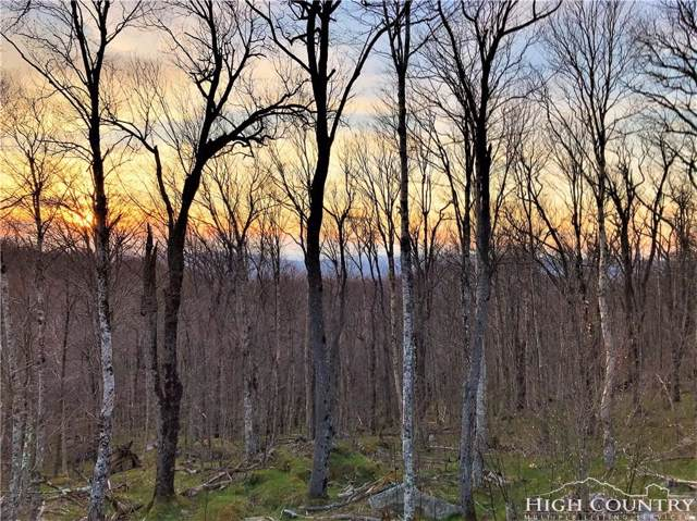 Lot 10 Fox Crest, Beech Mountain, NC 28604 (MLS #214576) :: RE/MAX Impact Realty