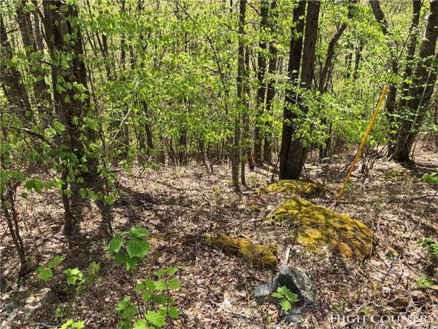 116 Thistle Lane, Beech Mountain, NC 28604 (MLS #214597) :: RE/MAX Impact Realty