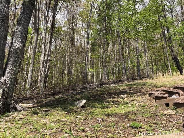 113 Thistle Lane, Beech Mountain, NC 28604 (MLS #214599) :: RE/MAX Impact Realty
