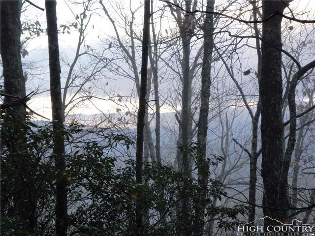 Lot 215 Casey Mountain Road, Purlear, NC 28665 (MLS #214645) :: RE/MAX Impact Realty