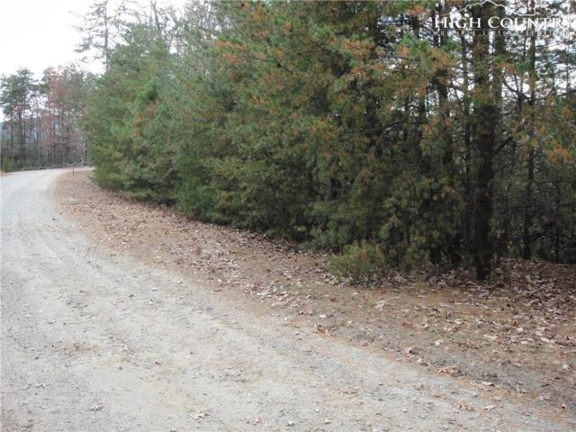 Lot 78 Buck Mountain Road, Purlear, NC 28665 (MLS #214647) :: RE/MAX Impact Realty