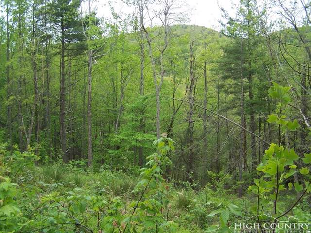 tbd Holiday Hills Road, Boone, NC 28607 (MLS #214677) :: RE/MAX Impact Realty