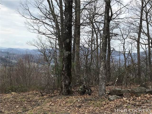 tbd Cottontail Trail, West Jefferson, NC 28694 (MLS #214687) :: RE/MAX Impact Realty