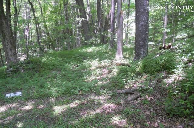lot 43 44 Rainbow Ridge Road, Zionville, NC 28698 (#214753) :: Mossy Oak Properties Land and Luxury