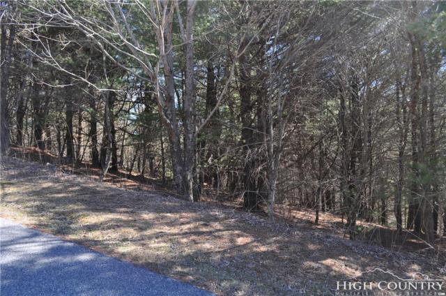 Lot 39 Picasso Drive, Blowing Rock, NC 28605 (MLS #214823) :: RE/MAX Impact Realty
