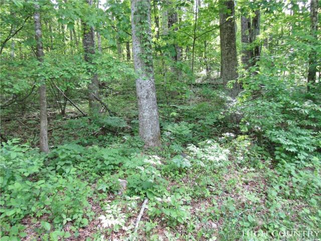 Lot 33 Oc Roland Road, Jefferson, NC 28640 (MLS #214907) :: RE/MAX Impact Realty