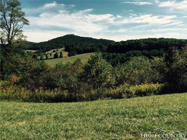 Lot 10 E Landing Ridge Circle, Jefferson, NC 28640 (MLS #215025) :: RE/MAX Impact Realty