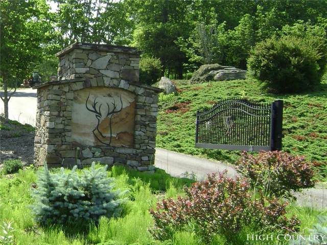 Lot 33 Wapiti Way, Blowing Rock, NC 28605 (MLS #215317) :: RE/MAX Impact Realty