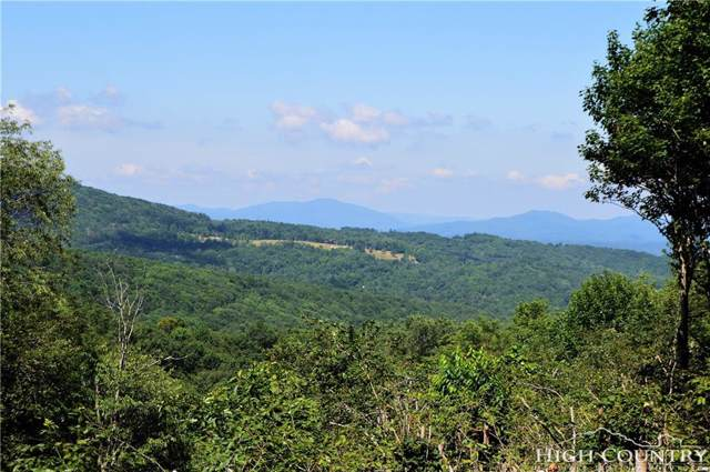 1410 Beech Mountain Parkway, Beech Mountain, NC 28604 (MLS #215368) :: RE/MAX Impact Realty
