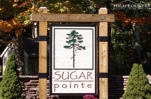 Lot 218 Cloud Springs Drive, Sugar Mountain, NC 28604 (MLS #215837) :: RE/MAX Impact Realty