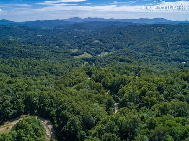 TBD Russ Norris Road, Elk Park, NC 28622 (MLS #215846) :: RE/MAX Impact Realty