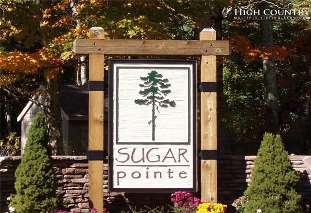 Lot 220 Paddock Lane, Sugar Mountain, NC 28604 (MLS #215851) :: RE/MAX Impact Realty