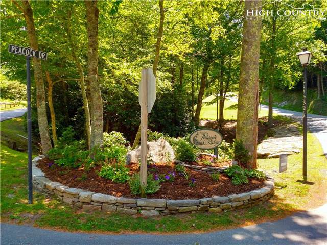 Lot 28 Peacock Drive, Blowing Rock, NC 28605 (MLS #215854) :: RE/MAX Impact Realty