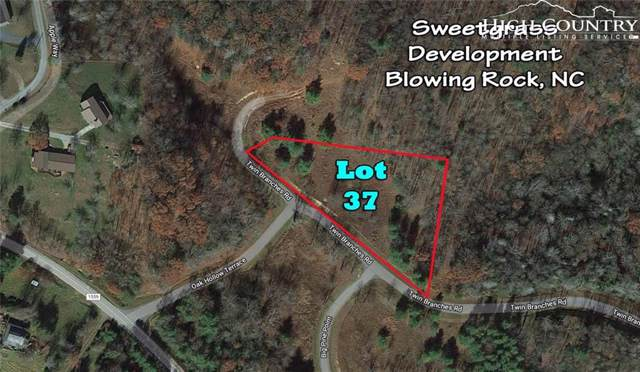 Lot 37 Twin Branches Road, Blowing Rock, NC 28605 (MLS #215900) :: RE/MAX Impact Realty
