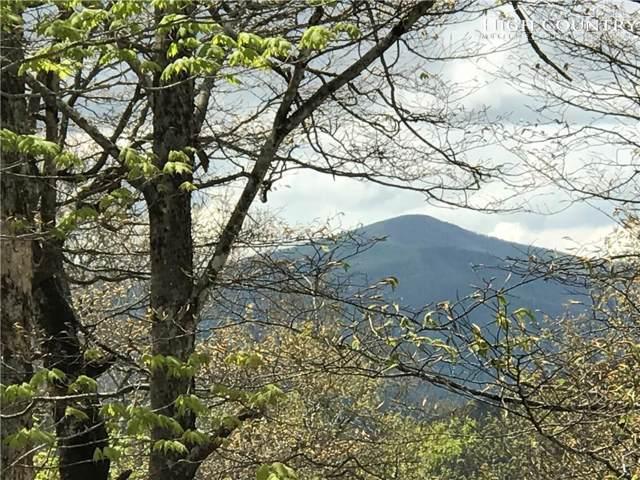 Lot 80 Moss Rock Lane, Sugar Mountain, NC 28604 (MLS #215930) :: RE/MAX Impact Realty