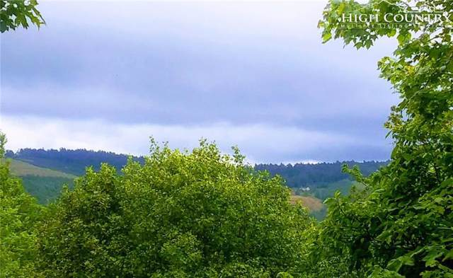 tbd Hidden Springs Road Ext., West Jefferson, NC 28694 (MLS #216003) :: RE/MAX Impact Realty