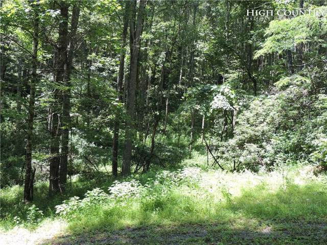 TBD Happy Eden Drive, Piney Creek, NC 28663 (MLS #216184) :: RE/MAX Impact Realty