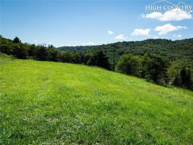 Lot  20-A Waterstone Drive, Boone, NC 28607 (MLS #216304) :: RE/MAX Impact Realty