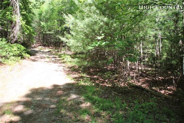 64 River View Drive, Millers Creek, NC 28651 (MLS #216597) :: RE/MAX Impact Realty