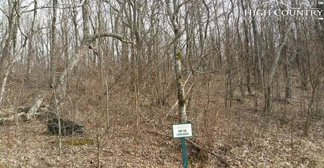 Lot 55 Crown Point Road, West Jefferson, NC 28694 (#216600) :: Mossy Oak Properties Land and Luxury