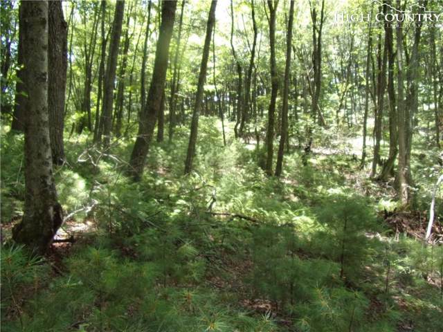 TBD Lot # 1 Roe Hunt Road, Jefferson, NC 28640 (MLS #216647) :: RE/MAX Impact Realty