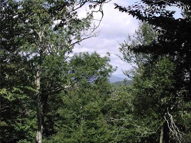 Lot 90 Moss Rock Lane, Sugar Mountain, NC 28604 (MLS #216708) :: RE/MAX Impact Realty