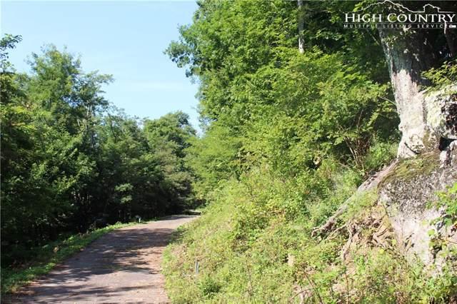 Lot 10 Ridge @ Hawks Peak Trail, Seven Devils, NC 28604 (MLS #217215) :: RE/MAX Impact Realty