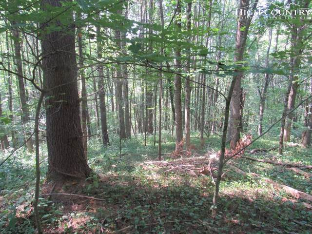 TBD Spicewood Drive, Warrensville, NC 28693 (#217700) :: Mossy Oak Properties Land and Luxury