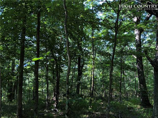 Lot 20 Devonshire Place, Jefferson, NC 28640 (MLS #217843) :: RE/MAX Impact Realty