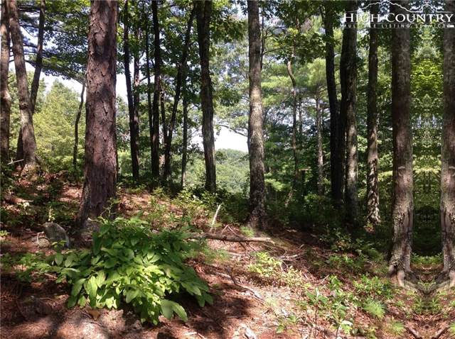 Lot 98 Reynolds Parkway, Boone, NC 28607 (MLS #217872) :: RE/MAX Impact Realty