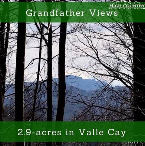 Lot 38 Valle View Drive, Vilas, NC 28692 (MLS #217974) :: RE/MAX Impact Realty