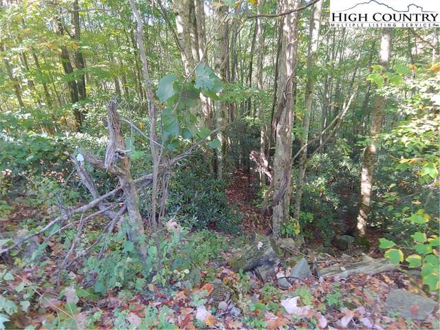 303 Locust Ridge Road, Beech Mountain, NC 28604 (MLS #218427) :: RE/MAX Impact Realty