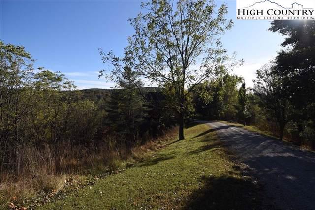 Lot #63 Nature Walk Way Drive, Piney Creek, NC 28663 (MLS #218545) :: RE/MAX Impact Realty