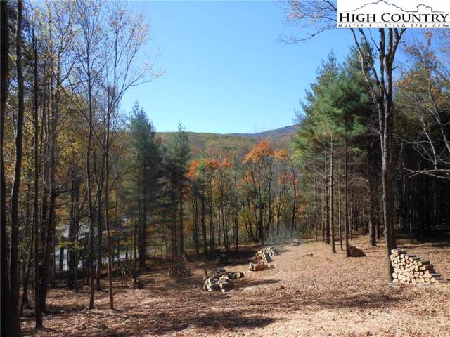 Lot 7 Twin Branches Road, Blowing Rock, NC 28605 (MLS #218566) :: RE/MAX Impact Realty