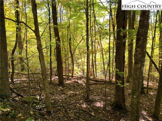 Lots 9 & 10 Thorncliff Drive, Seven Devils, NC 28604 (MLS #218574) :: RE/MAX Impact Realty