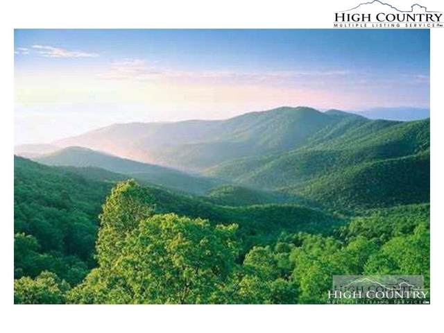 Tbd Heavenly Mountain Drive, Boone, NC 28607 (MLS #218577) :: RE/MAX Impact Realty