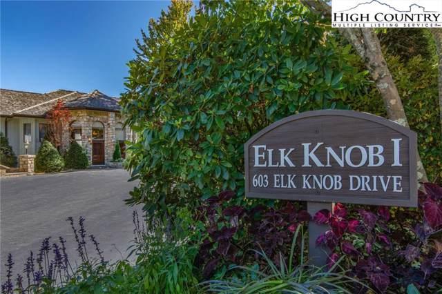 603 Elk Knob Drive D2, Banner Elk, NC 28604 (MLS #218634) :: RE/MAX Impact Realty