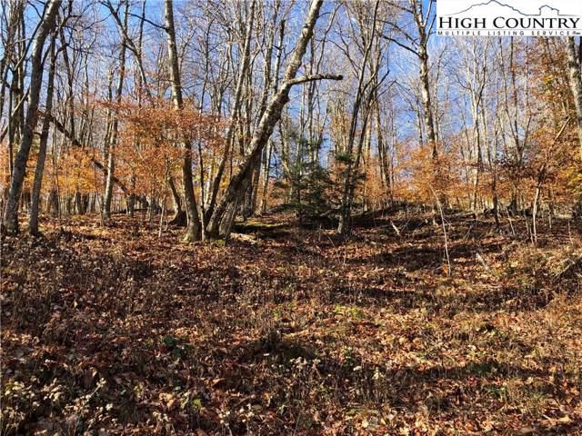218 Lake Road, Beech Mountain, NC 28604 (MLS #218783) :: RE/MAX Impact Realty