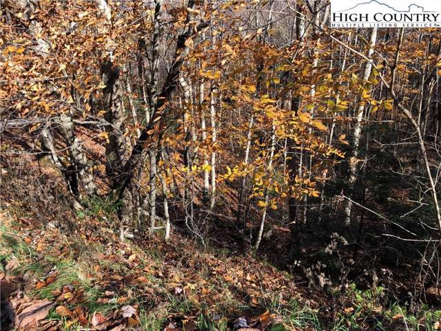 415 Lake Road, Beech Mountain, NC 28604 (MLS #218784) :: RE/MAX Impact Realty