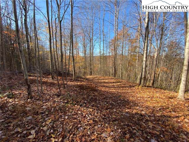 TBD Mountain Home Road, Elk Park, NC 28622 (MLS #218871) :: RE/MAX Impact Realty