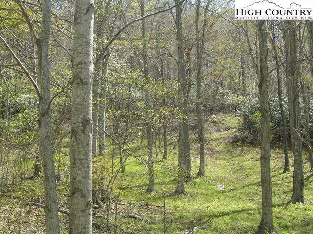 tbd Bob's Mountain Road, Boone, NC 28607 (MLS #218885) :: RE/MAX Impact Realty