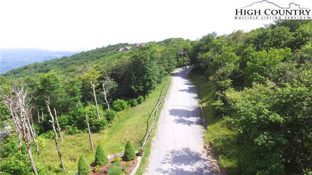 TBD Fox Crest, Beech Mountain, NC 28604 (#219334) :: Mossy Oak Properties Land and Luxury