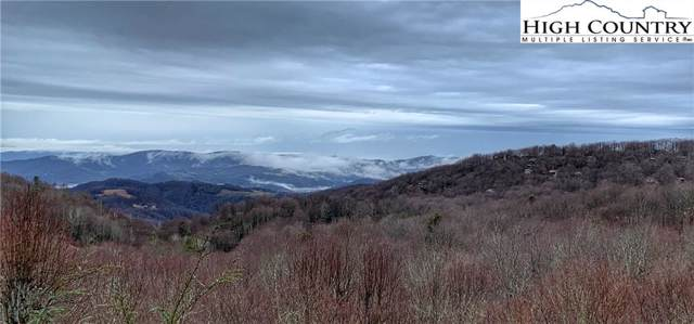 123 Dogwood Lane, Beech Mountain, NC 28604 (MLS #219747) :: RE/MAX Impact Realty